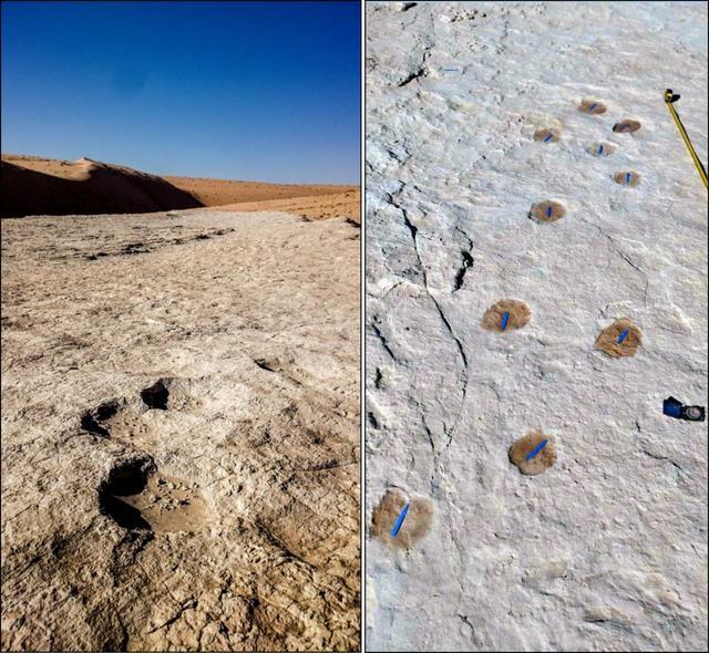 12万年前的人类脚印被发现!且行且珍惜!
